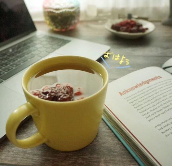 朝氣紅棗枸杞茶 草生光養 漢方養生花草果茶